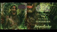 Ahtme - Sewerborn (FULL ALBUM HD AUDIO)