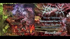 Organectomy - Domain of the Wretched (FULL ALBUM HD AUDIO)