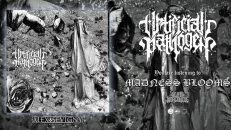 ARTIFICIAL PATHOGEN - MADNESS BLOOMS [SINGLE] (2021) SW EXCLUSIVE