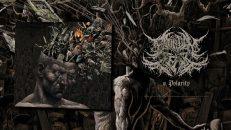 Bound in Fear - Polarity