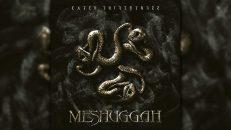 M̲eshuggah - Catc̲h Thir̲t̲ythree (2005) [Full Album] HQ